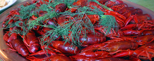 Green dill, red crayfish and golden snaps. Life is good.